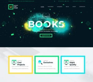 Media Store WordPress Theme